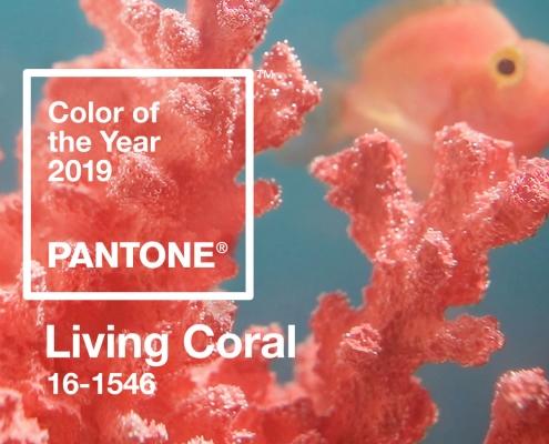 Pantone Living Coral Kitchen