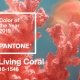 Pantone Living Coral Kitchen